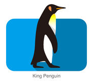 King Penguin walking, Penguin seed series. Vector illustration Stock Photo