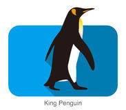King Penguin walking, Penguin seed series. Vector illustration Royalty Free Stock Photos