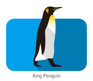 King Penguin walking, Penguin seed series. Vector illustration Stock Photography