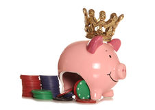 King of poker piggy bank. Cutout Stock Image