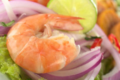 King Prawn Ceviche Royalty Free Stock Photos