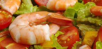 King Prawn on Salad Royalty Free Stock Image