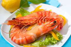 King prawns Stock Photography
