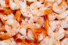 King prawns cooked Royalty Free Stock Photography