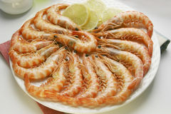 King prawns dish Stock Photos