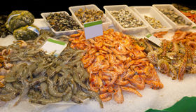 King prawns in the market Royalty Free Stock Photos