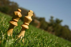 King and queen chess pieces. On green grass Stock Images