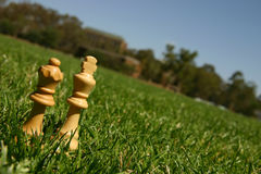 King and queen chess pieces. On green grass Royalty Free Stock Image