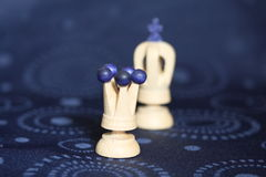 Queen and king. Wooden chess pieces, the white queen and the king Royalty Free Stock Photography