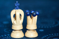 King and queen chess pieces Royalty Free Stock Photos