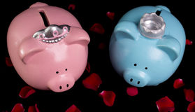 King & Queen Piggy Banks. On a bed of red rose petals on black background stock photo