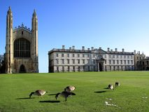 King's College, Cambridge University. England was founded in the 15th century by King Henry V1 Royalty Free Stock Image