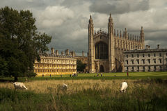 King's College Chapel, Cambridge University. Historic King's College Chapel, Cambridge University, view from across River Cam Stock Image
