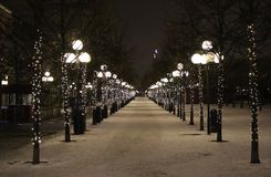 Kings Garden. Winter beautiful in the Kings Garden in Stockholm Royalty Free Stock Photos