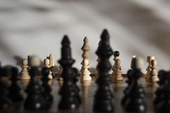 The king's guard-chess Royalty Free Stock Photo