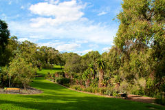 King's park Perth. Garden view of King's park Perth Stock Image