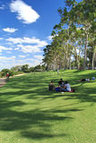 King's Park in Perth, Western Australia. People relax on Green recreation area in King's Park in Perth, Western Australia Stock Photos
