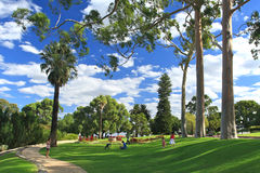 King's Park in Perth, Western Australia. People relax on Green recreation area in King's Park in Perth, Western Australia Stock Photography
