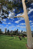 King's Park in Perth, Western Australia. People walking on Green recreation area in King's Park, Perth cityscape as background.Western Australia Royalty Free Stock Images