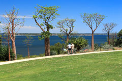 King's Park in Perth, Western Australia Stock Photos