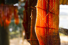 King Salmon Fish Meat Catch Hanging Native American Lodge Drying Royalty Free Stock Photos