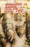 King Salmon at Market Royalty Free Stock Photography