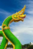King of serpent Royalty Free Stock Images
