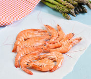King shrimps on blue background with asparagus. On blue background royalty free stock images
