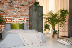 King-size bed in modern bedroom. Decorated with plants and cotton balls stock photos