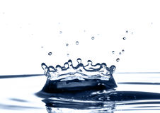 King Splash Stock Images
