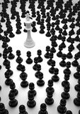 King surrounded. White ches king surrounded by black pawns Royalty Free Stock Photography
