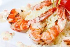 King tiger prawn shrimp Stock Photos