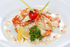 King tiger prawn shrimp Stock Photography