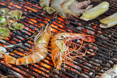 King tiger prawn shrimp GRILLED SEAFOOD Royalty Free Stock Photos