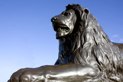 King of Trafalgar stock photography
