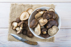 King trumpet mushrooms on the table of the kitchen Stock Photos