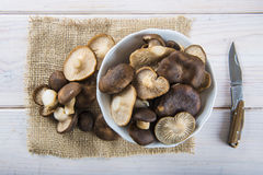 King trumpet mushrooms on the table of the kitchen Stock Photo