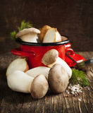 King trumpet mushrooms and vegetables for cooking soup Royalty Free Stock Photos