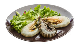 King and waterleg shrimps Royalty Free Stock Photo