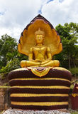 The King's Buddha statue Royalty Free Stock Photos