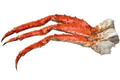Kingcrablegs Royalty Free Stock Photos