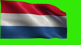 Kingdom of the Netherlands, Flag of Netherlands, D stock video footage