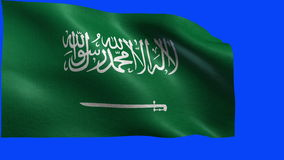 Kingdom of Saudi Arabia, Flag of Saudi Arabia - LOOP Royalty Free Stock Image
