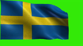 Kingdom of Sweden, Flag of Sweden, Swedish Flag - LOOP. Beautiful 3d flag animation on green/blue screen in 4k format - seamless looped stock footage