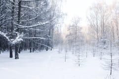 Kingdome del invierno Fotos de archivo