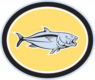 Kingfish Cartoon Oval Royalty Free Stock Images