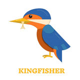 Kingfisher Bird Icon. KIngfisher bird line art icon. Birdwatching popular bird collection. Flat design kingfisher colored in bright vivid hues. Childish and Stock Photo