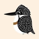 Kingfisher cartoon vector, Crested Kingfisher cartoon vector. Kingfisher vector, Crested Kingfisher cartoon vector. An often brightly colored bird with a large Stock Photography