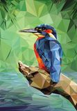 Kingfisher Low Poly Royalty Free Stock Photo