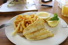 Kingklip for Lunch. Close up of a plate of south african fish and chips, grilled fish with french fries Royalty Free Stock Images
